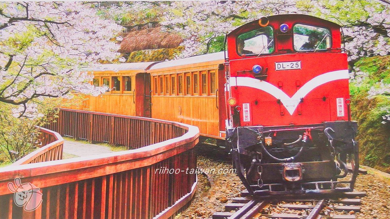 阿里山森林鉄道の写真